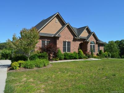 Hendersonville Single Family Home For Sale: 75 Ridgeview Hill Drive