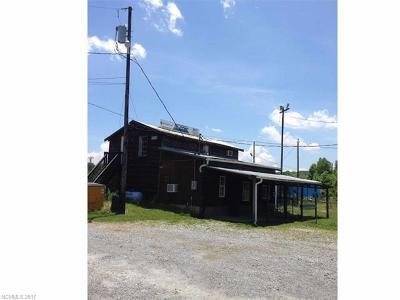 Hendersonville Single Family Home For Sale: 5423 Asheville Highway
