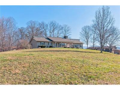 Candler Single Family Home For Sale: 320 Pisgah Highway