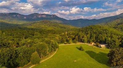 Lake Lure NC Single Family Home For Sale: $3,450,000