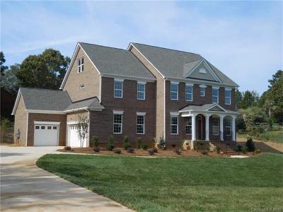 Mint Hill Single Family Home For Sale: 9940 Stonebridge Way #69