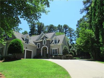 Mooresville Single Family Home For Sale: 133 Wild Harbor Road