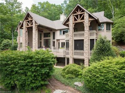Hendersonville Single Family Home For Sale: 44 Falls Lane