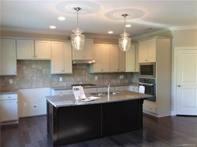 Davidson Single Family Home For Sale: 13703 Helen Benson Boulevard