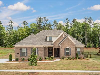 Waxhaw Single Family Home For Sale: 304 Westlake Drive #42