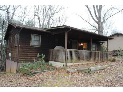 Weaverville Single Family Home For Sale: 97 Dula Springs Road