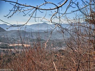 Hendersonville Residential Lots & Land For Sale: 20 Fire Azalea Lane #32