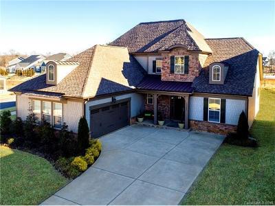 Charlotte Single Family Home For Sale: 13203 Horned Lark Drive