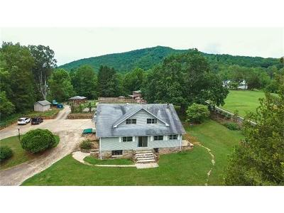 Candler Single Family Home For Sale: 1779 Pisgah Highway