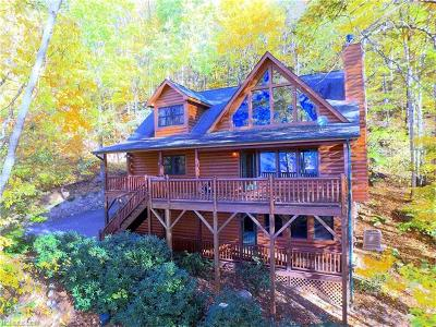 Maggie Valley Single Family Home For Sale: 200 Kanusati Trail