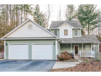 Asheville Single Family Home For Sale: 21 Village Creek Drive #11