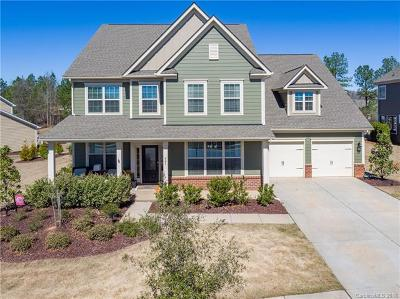 Fort Mill Single Family Home For Sale: 941 Skywater Drive