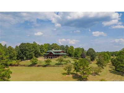 Rutherfordton Single Family Home For Sale: 1054 Rainbow Rapids Road