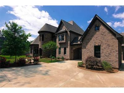 Fort Mill Single Family Home For Sale: 1125 Trinity Ridge Parkway