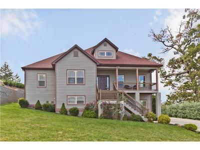 Asheville Single Family Home For Sale: 132 Climbing Aster Way