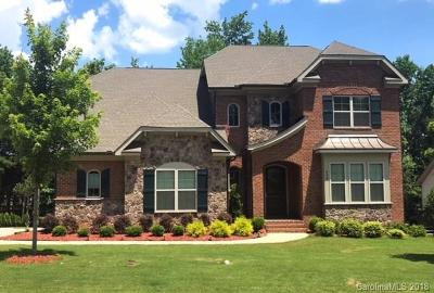 Fort Mill Single Family Home For Sale: 938 Castlewatch Drive