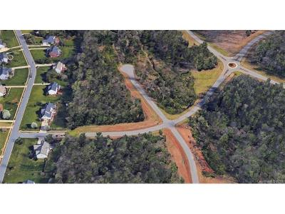 Mint Hill Residential Lots & Land For Sale: 12824 San Marco Drive