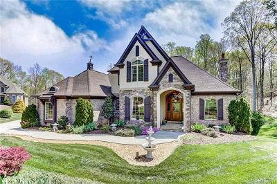 Waxhaw Single Family Home For Sale: 6009 Stonepath Lane