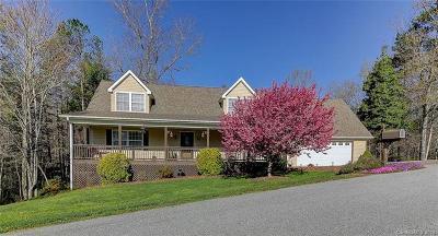 Hendersonville Single Family Home For Sale: 221 Scenic Ridge Drive