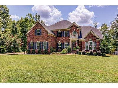 Lake Wylie Single Family Home For Sale: 640 Winter Walk Lane