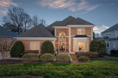 Ballantyne Country Club Single Family Home For Sale: 11038 Pound Hill Lane