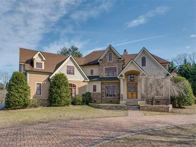 Hendersonville Single Family Home For Sale: 27 Cape Martin Circle