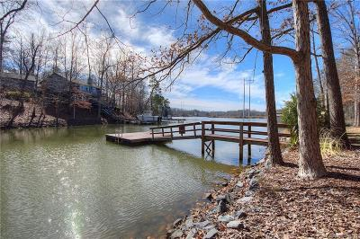 Lake Wylie Single Family Home For Sale: 529 Evergreen Road