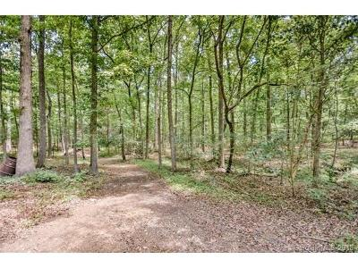 Concord Residential Lots & Land For Sale: 4700 Thunderbolt Road #2