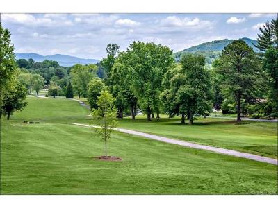 Etowah Single Family Home For Sale: North Course Drive #5