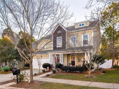Cornelius Single Family Home For Sale: 19125 Coachmans Trace