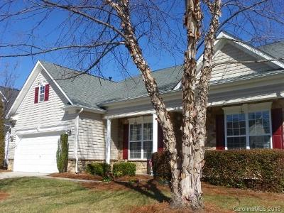 Fort Mill Single Family Home For Sale: 911 Platinum Drive