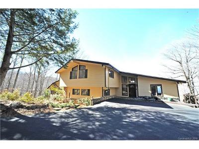 Asheville NC Single Family Home For Sale: $790,000