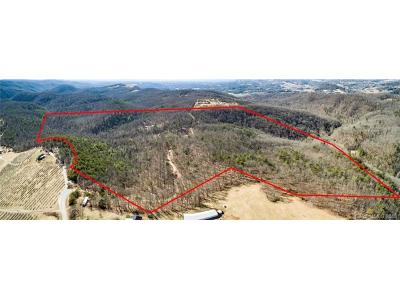 Hendersonville Residential Lots & Land For Sale: 1813 Low Gap Road