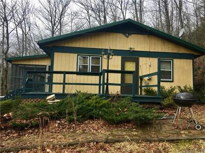 Avery County Single Family Home For Sale: 4949 Edgemont Road