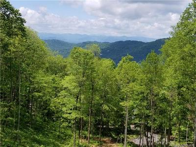 Asheville Residential Lots & Land For Sale: 99 NE Howland Road #24