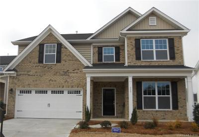 Rock Hill Single Family Home For Sale: 339 Willow Tree Drive #53