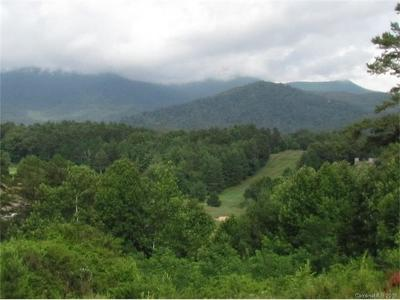 Weaverville Residential Lots & Land For Sale: 71 Union Chapel Road
