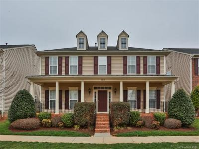 Huntersville Single Family Home For Sale: 3915 Archer Notch Lane
