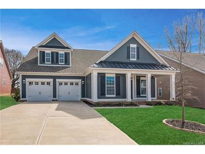 Tega Cay Single Family Home For Sale: 5190 Waterloo Drive