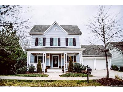 Fort Mill Single Family Home For Sale: 5038 Downing Drive