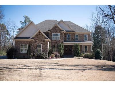 Lake Wylie Single Family Home For Sale: 314 Stone Cliff Lane