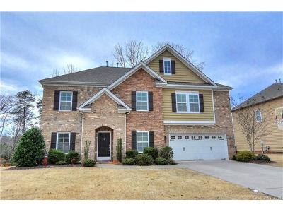 Charlotte Single Family Home For Sale: 10328 Daufuskie Drive