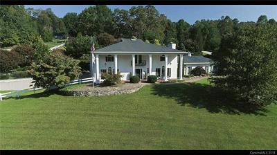 Hendersonville Single Family Home For Sale: 409 Rickel Drive
