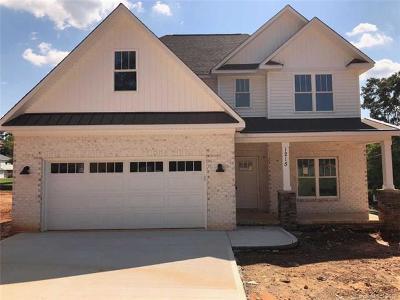 Kannapolis Single Family Home For Sale: 1215 Robinhood Lane #60