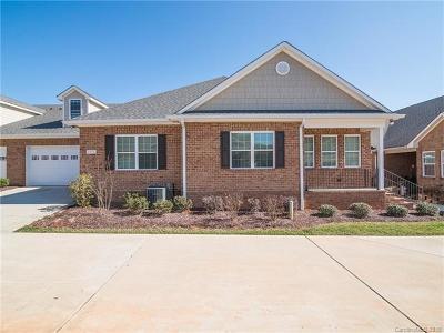 Denver Single Family Home For Sale: 2374 Stardust Court