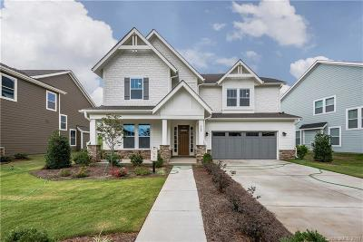 Clover, Lake Wylie Single Family Home For Sale: 668 Daventry Court #34