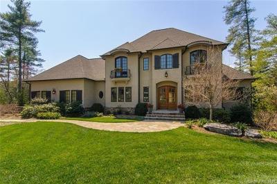 Asheville Single Family Home For Sale: 22 Beadle Lane