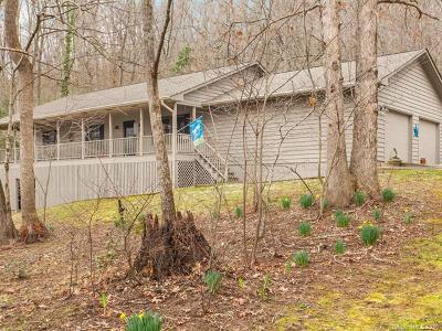 Black Mountain Single Family Home For Sale: 175 Lake Eden Road