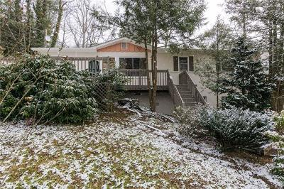 Asheville Single Family Home For Sale: 21 Von Ruck Terrace