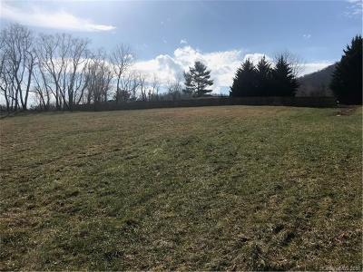 Asheville Residential Lots & Land For Sale: 818 New Haw Creek Road